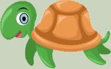 Turtle100